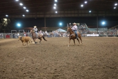 Team Roping in Action