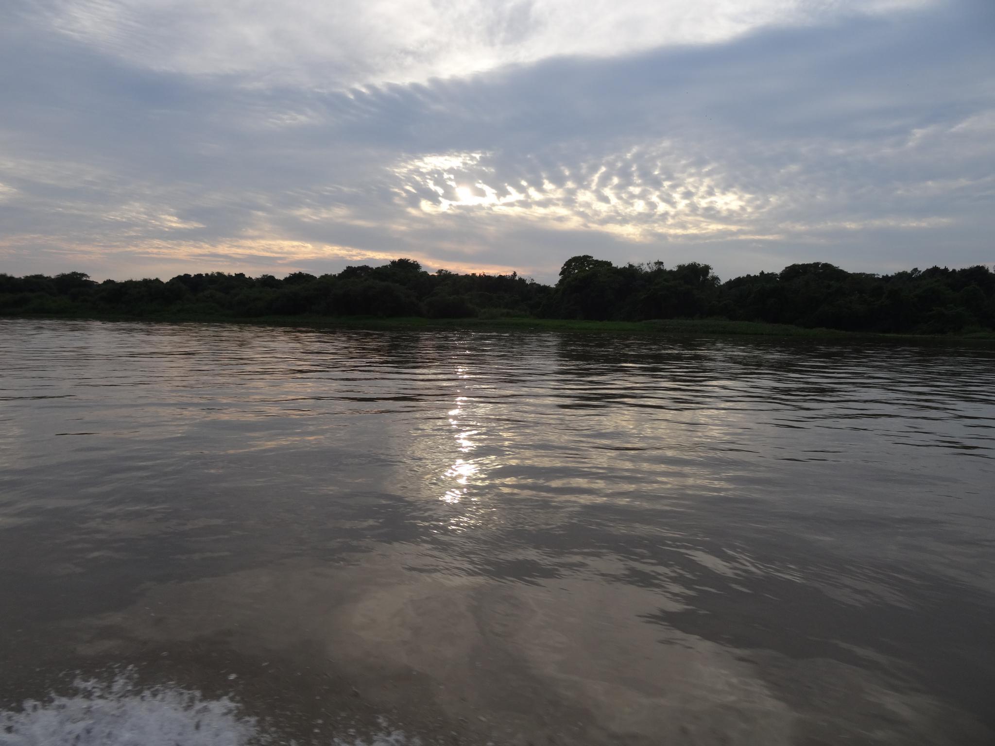 Der Tag erwacht im Pantanal (Porto Jofre)