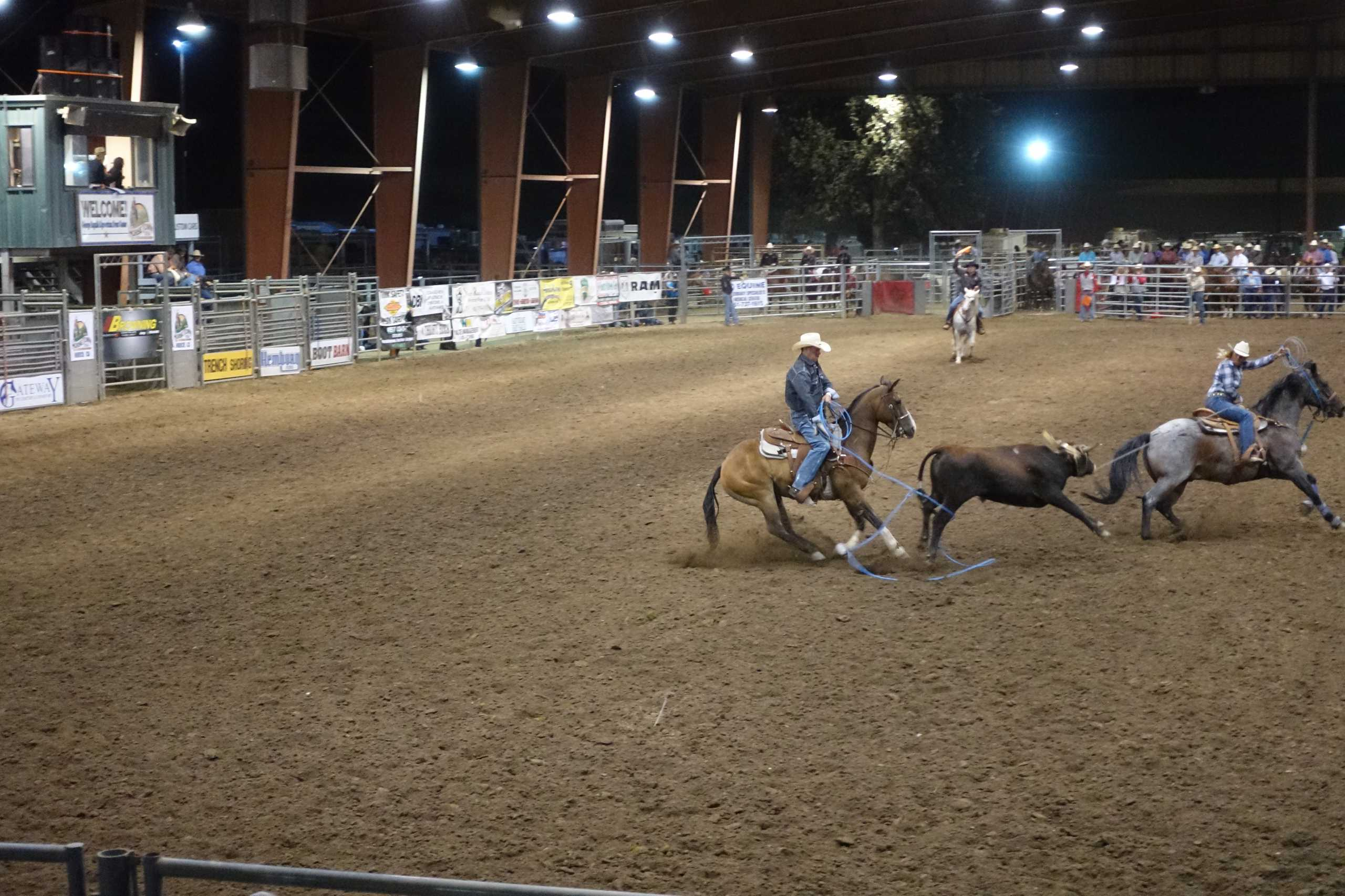 erfolgreiches Team Roping